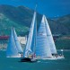 This is an image of sailboats sailing in the bay.